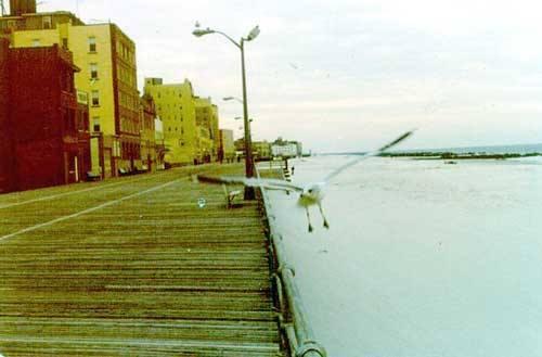 sea gull over deserted boardwalk